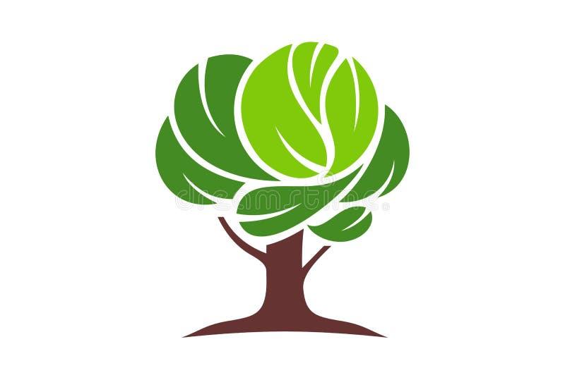 Abstrakcjonistyczny drzewo zieleni pojęcia loga projekta ikony wektor ilustracji