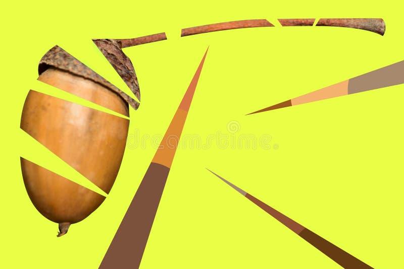 Abstrakcjonistyczny geometryczny tło z acorn jest makro- na żółtym tle obraz stock
