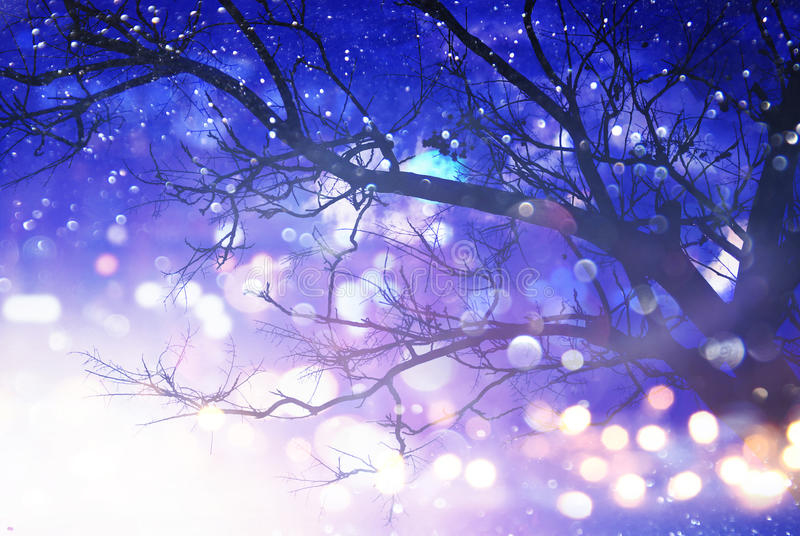 Abstrakcjonistyczny i magiczny wizerunek drzewo z błyskotliwością zaświeca zdjęcia royalty free