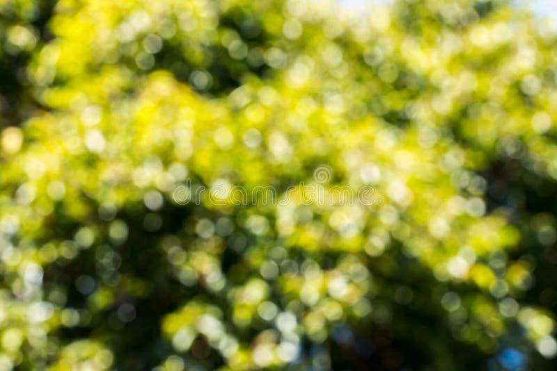 Abstrakcjonistyczny kółkowy plamy bokeh tło zdjęcia royalty free