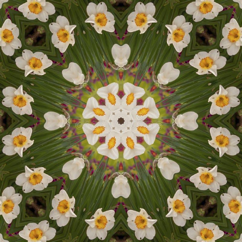 Abstrakcjonistyczny kalejdoskop z daffodil kwitnie przy wiosną zdjęcie stock