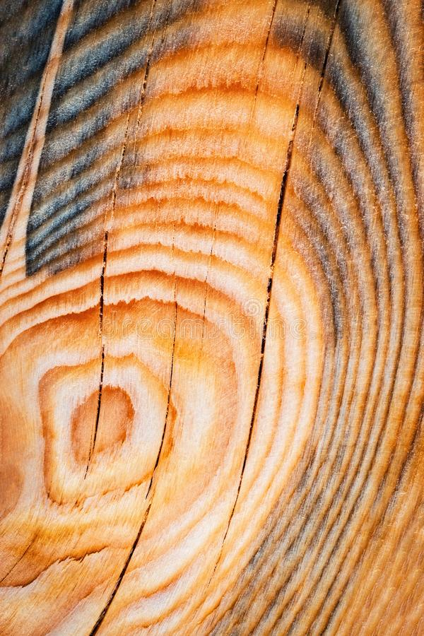 Abstrakcjonistyczny koloru szczegół drewniana deska obraz stock