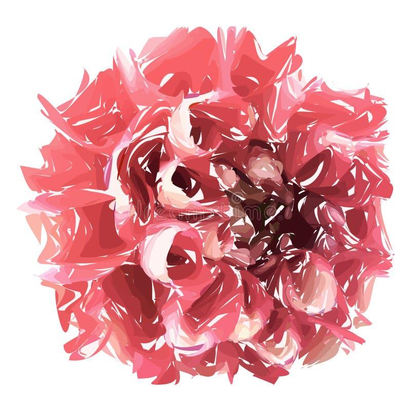 Abstrakcjonistyczny kwiat, różowa chryzantema odizolowywająca na białym tle royalty ilustracja