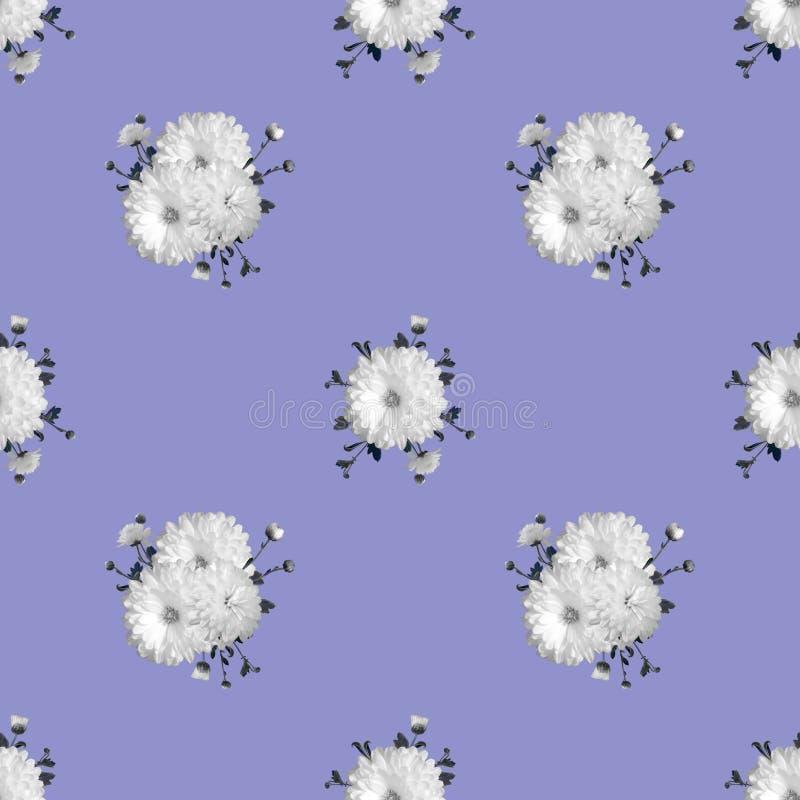 Abstrakcjonistyczny kwiecisty bezszwowy tło z białymi chryzantemami ilustracji