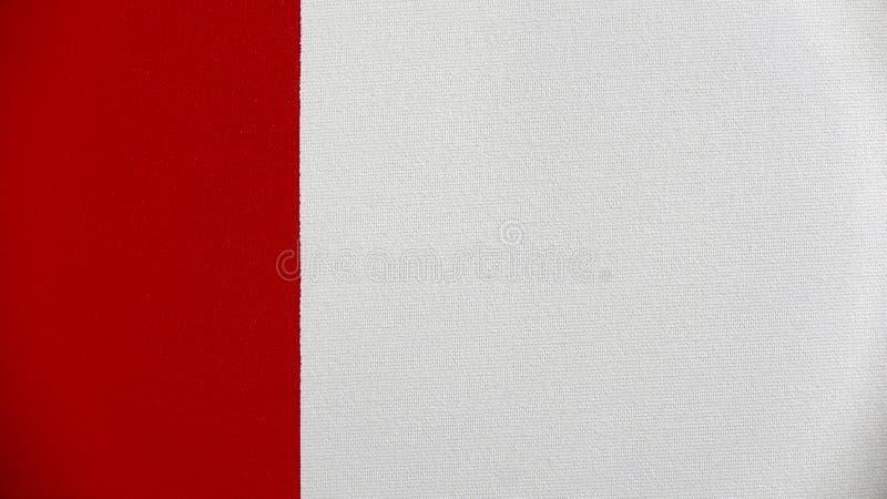 Abstrakcjonistyczny lampasa wzór: farba nafciani kolory na kanwie obrazy royalty free