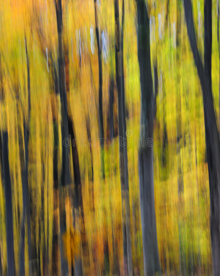 abstrakcjonistyczny las obrazy stock