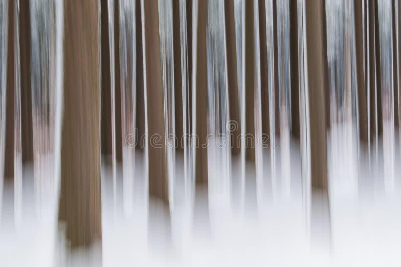 Abstrakcjonistyczny las w zimie obrazy royalty free
