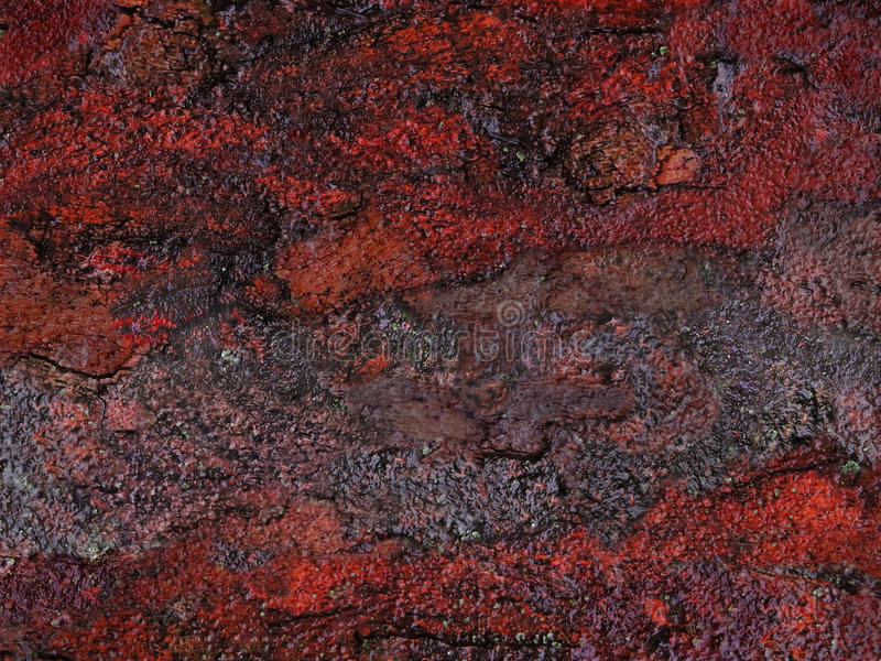 Abstrakcjonistyczny naturalny facture obrazy royalty free