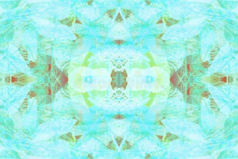 Abstrakcjonistyczny naturalny tropikalny tło Botaniczny symetryczny tło Naturalny wzór tonujący roślina liści rocznika skutek obraz royalty free