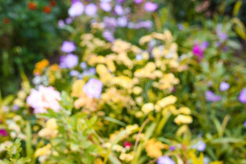 Abstrakcjonistyczny plama wizerunek lato rośliny Kwiaty obraz royalty free
