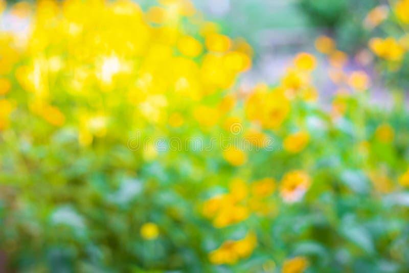 Abstrakcjonistyczny plama wizerunek lato rośliny Kwiaty zdjęcie royalty free