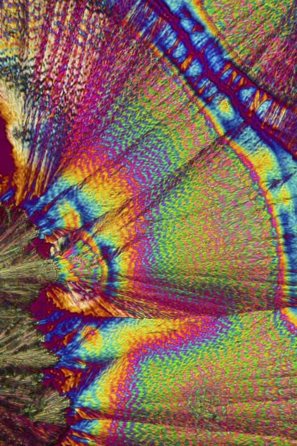 Abstrakcjonistyczny polaryzacyjny micrograph ascorbic kwasu kryształy zdjęcia stock