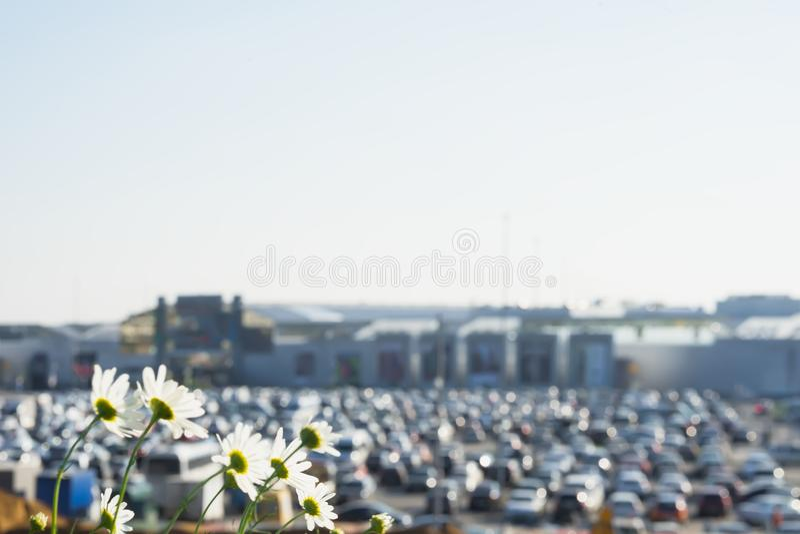 Abstrakcjonistyczny rozmyty parking samochodowy obok nowożytnego centrum handlowego, lato słoneczny dzień z kwiatami w przedpolu, zdjęcie royalty free