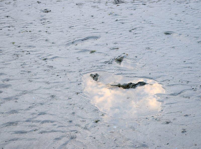 Abstrakcjonistyczny tło - Biegać lub Bieżąca woda z biel pianą zdjęcie stock
