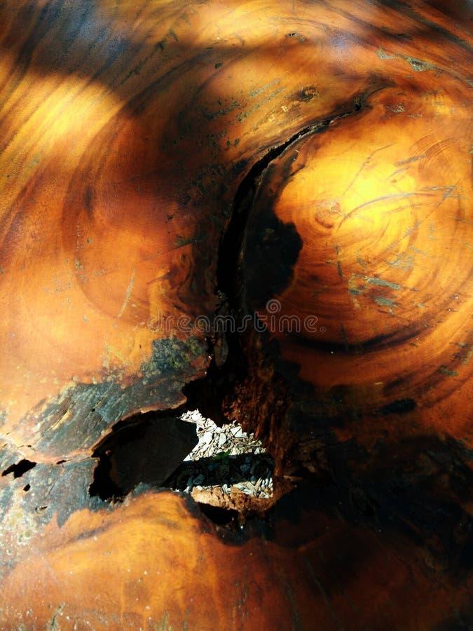 Abstrakcjonistyczny tło drewno deska na jaskrawym kolorze obrazy stock