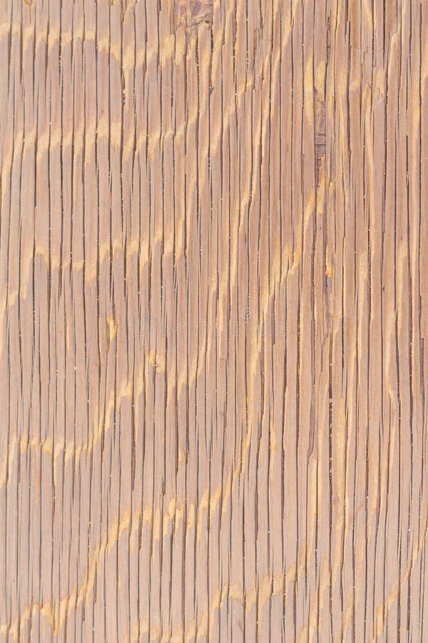 Abstrakcjonistyczny tło, Piękna tekstura nawierzchniowy drewniany zdjęcie royalty free