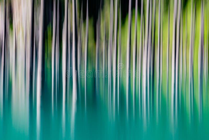 Abstrakcjonistyczny tło puści drzewa zamazujący obrazy stock