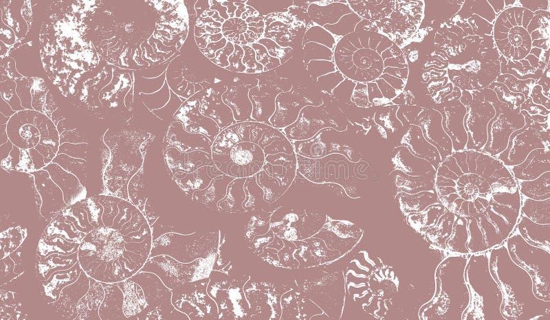 Abstrakcjonistyczny tło skamieniali amonity, dekoracyjna tapeta osłupiałe skorupy, druk od spiral seashells dalej obraz royalty free