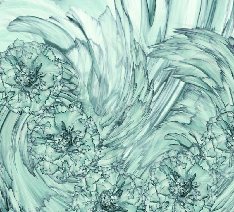 Abstrakcjonistyczny tło turkus goździkowy Kwiecisty tło z turkusowymi kwiatami goździki zdjęcie stock