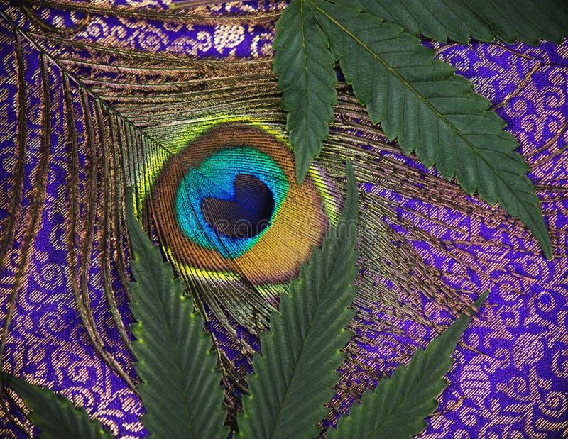 Abstrakcjonistyczny tło z paw marihuany i piórka liśćmi obrazy royalty free