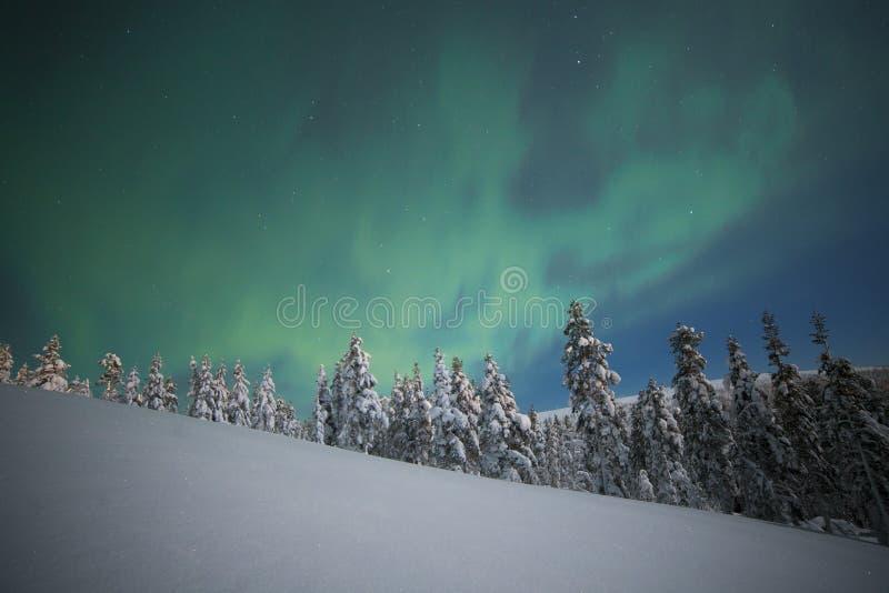 abstrakcjonistyczny tło zaświeca północnego wektor obraz royalty free