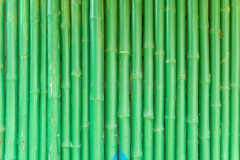 Abstrakcjonistyczny tło Zielony Chiński bambus obraz stock