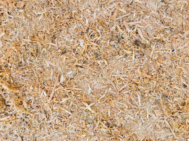 Abstrakcjonistyczny trociny lub drewniany pył tekstury tło Zamyka w górę odgórnego widoku susi drewniani golenia, przemysłu pojęc obrazy royalty free