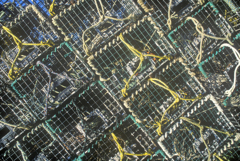 Abstrakcjonistyczny wizerunek sterty homarów oklepowie na góry Pustynnej wyspie, JA obrazy stock