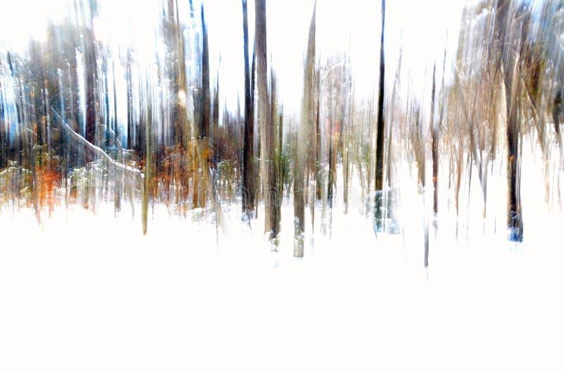 Abstrakcjonistyczny wizerunek zima las strzelał z pionowo panning techniką zdjęcie royalty free