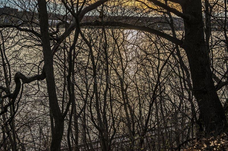 Abstrakcjonistyczny zmierzch na jeziorze obrazy royalty free