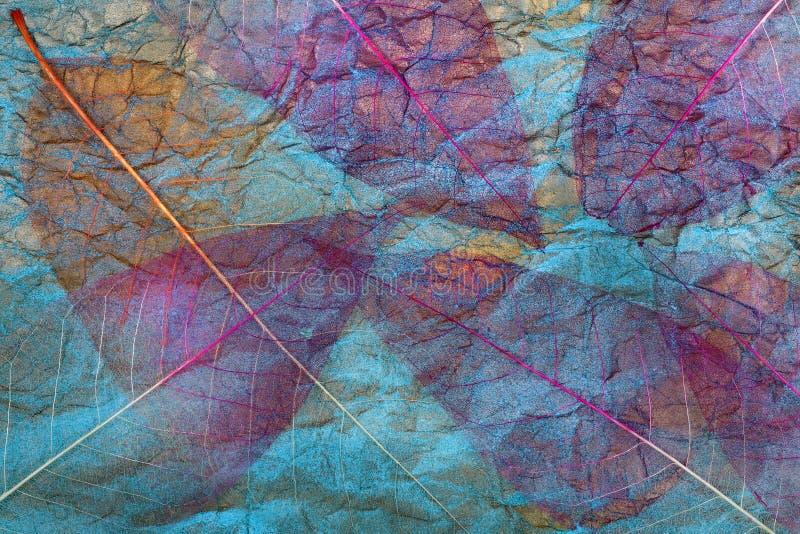 Abstrakcyjne tło jesiennych liści przezroczyste liście na niebiesko liści purpurowe zdjęcie stock