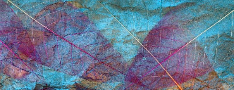 Abstrakcyjne tło jesiennych liści przezroczyste liście na niebiesko liści purpurowe obraz stock