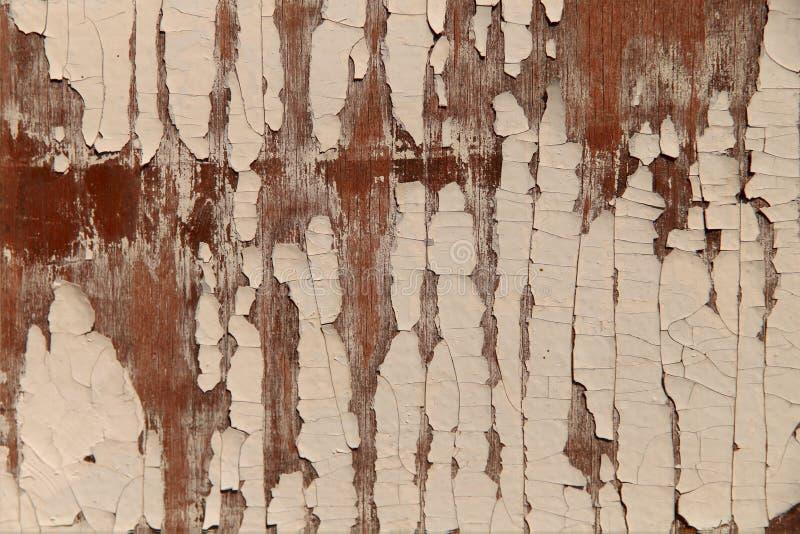 Abstrakcyjne tło teksturowane Stara, drewniana brązowa powierzchnia z farbą obierającą fotografia royalty free
