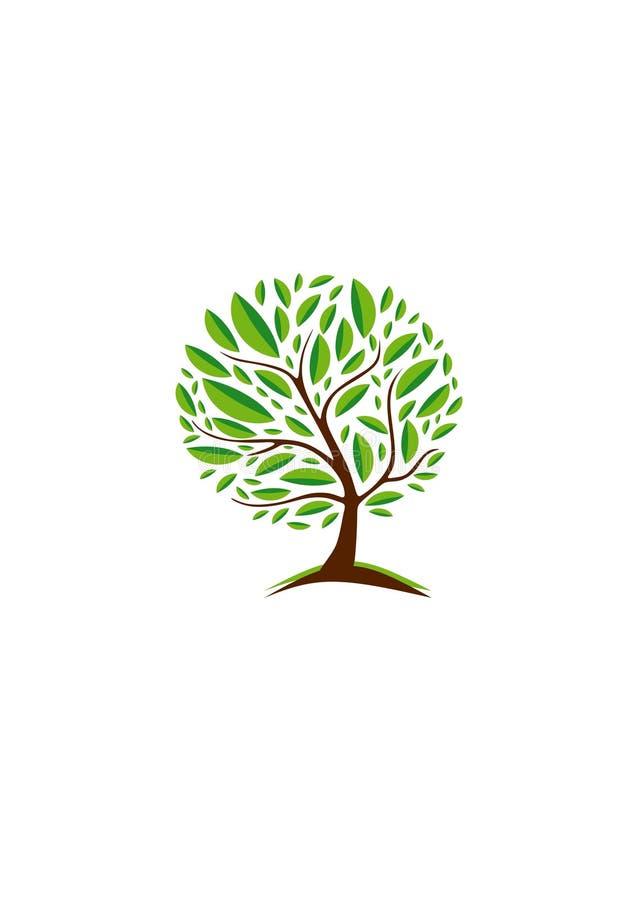 abstrakcyjny ekologii serii drzewa wektora Drzewny logo w okręgu Wektorowy drzewny emblemat ilustracja wektor