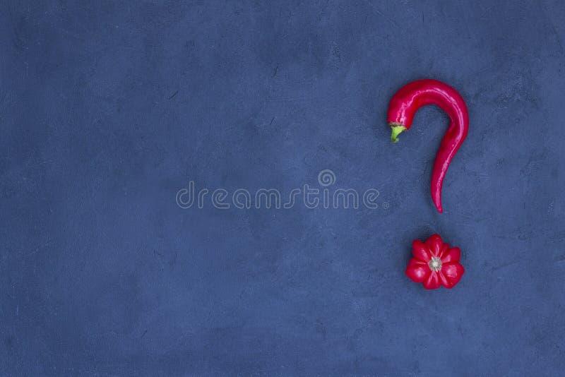 Abstrakcyjny obraz pomidora i pieprzu w formie znaku zapytania Niebieskie tło Istnieje miejsce na tekst zdjęcia stock