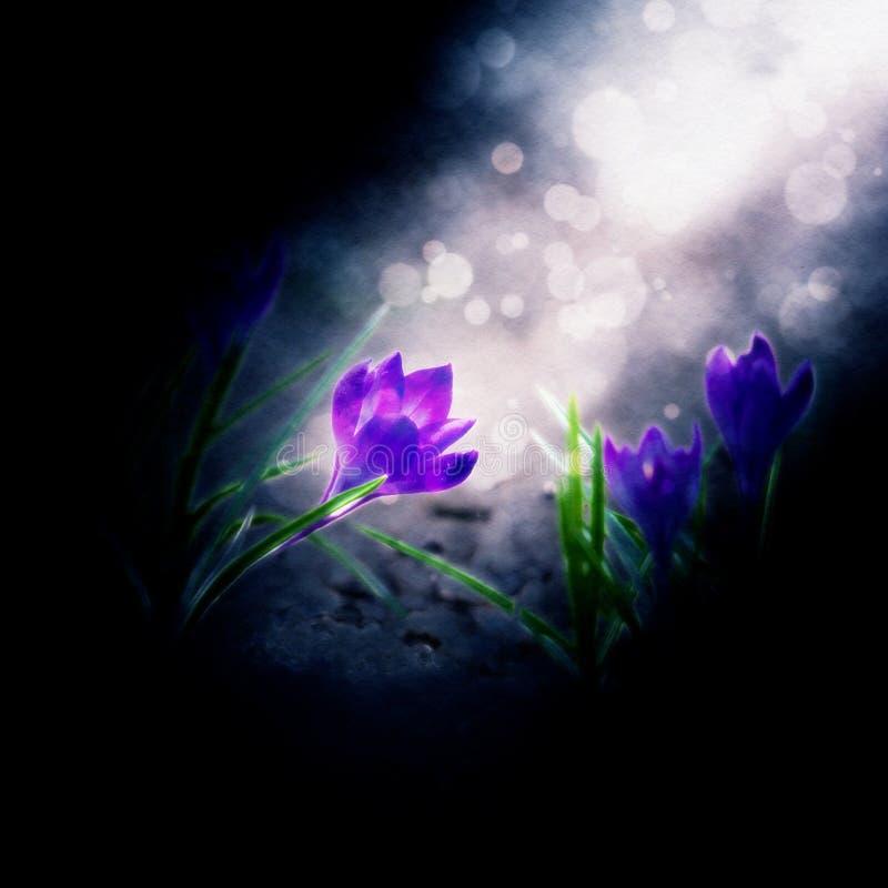 abstrakcyjnych artystycznych zakrzywionych kwiaty gradientów ilustracyjne linie kreślą styl royalty ilustracja