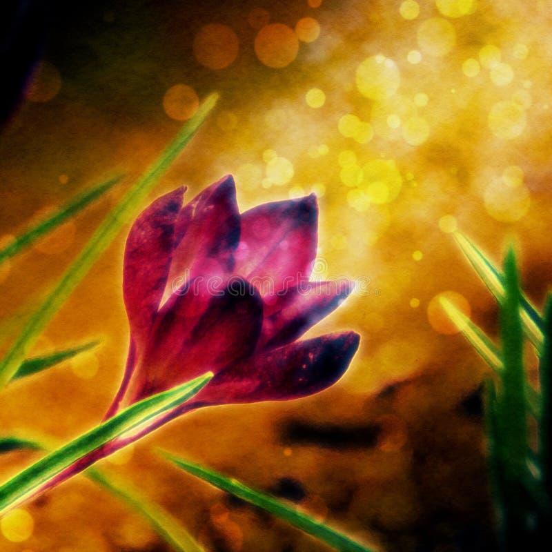 abstrakcyjnych artystycznych zakrzywionych kwiaty gradientów ilustracyjne linie kreślą styl ilustracja wektor