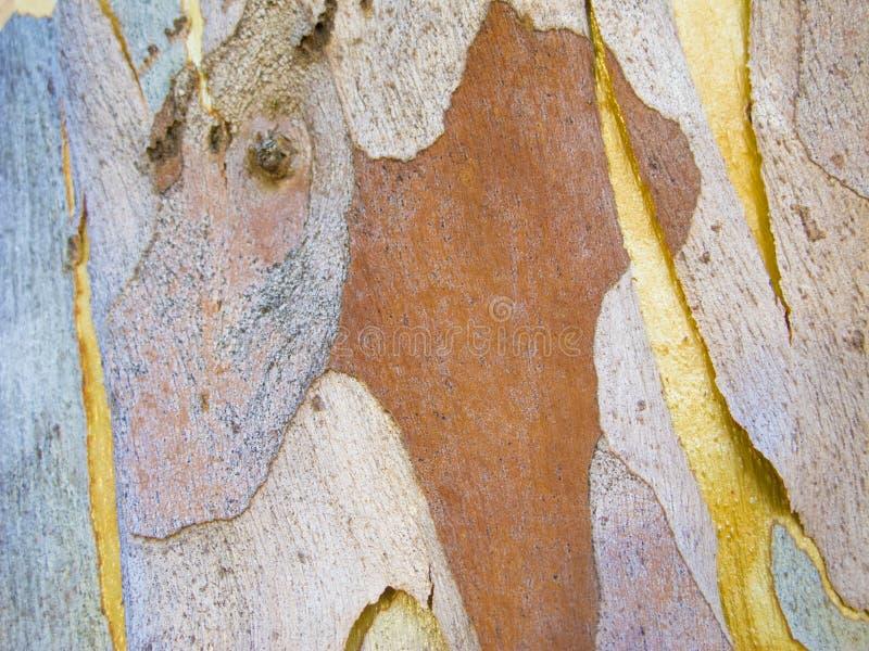 Abstraktów wzory na drzewnej barkentynie fotografia royalty free