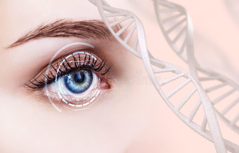 Abstrakt öga med den digitala cirkeln och DNAkedjor arkivfoto