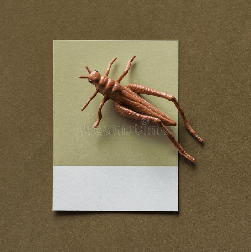 Abstrakt, Apper, Hintergrund stockfotos