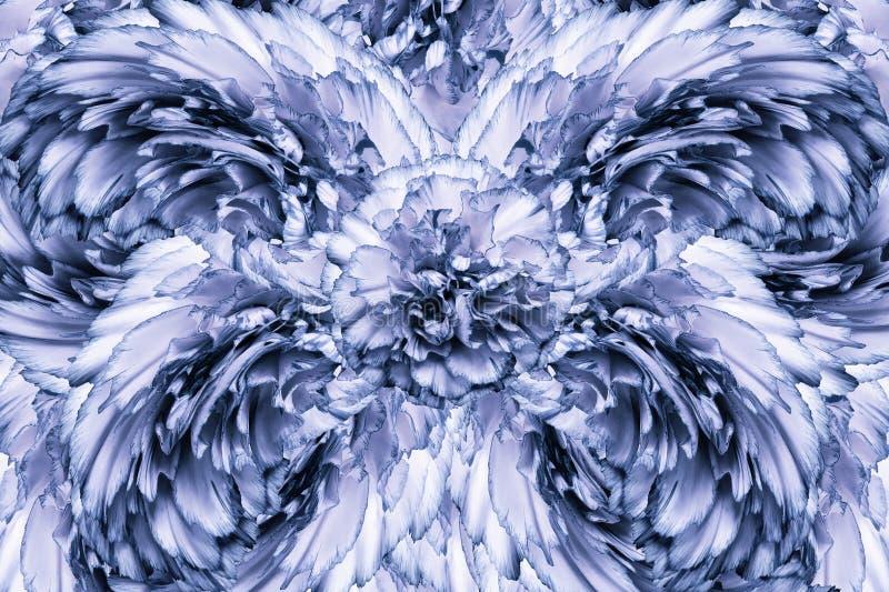 Abstrakt bakgrund av kronblad av enblått kryddnejlika blommar vektor för detaljerad teckning för bakgrund blom- royaltyfri bild