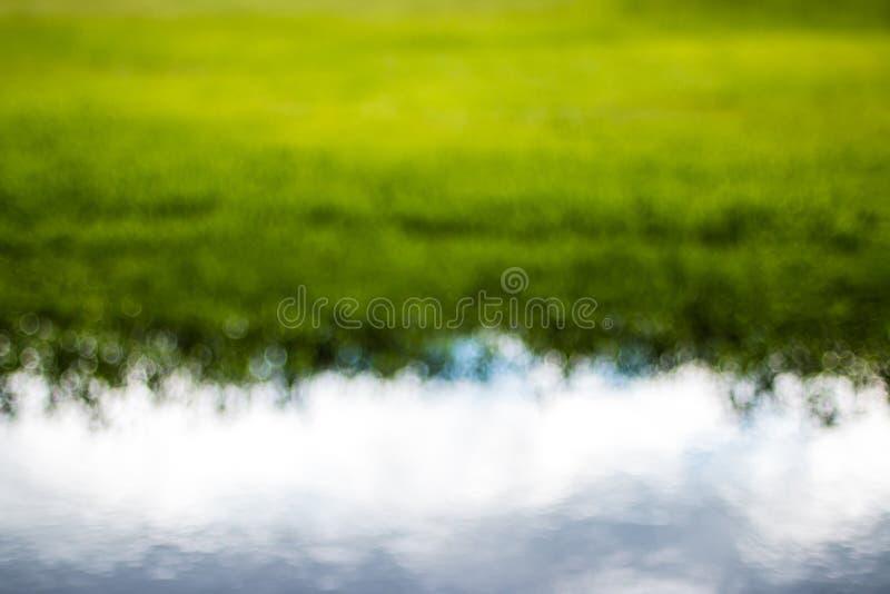 Abstrakt bakgrund för för Bokeh gräsplan och vit royaltyfri bild