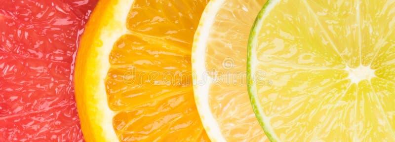 Abstrakt bakgrund med brokiga citrusfruktskivor, närbildbakgrund fotografering för bildbyråer
