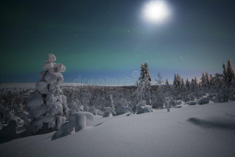 abstrakt bakgrund tänder den nordliga vektorn fotografering för bildbyråer