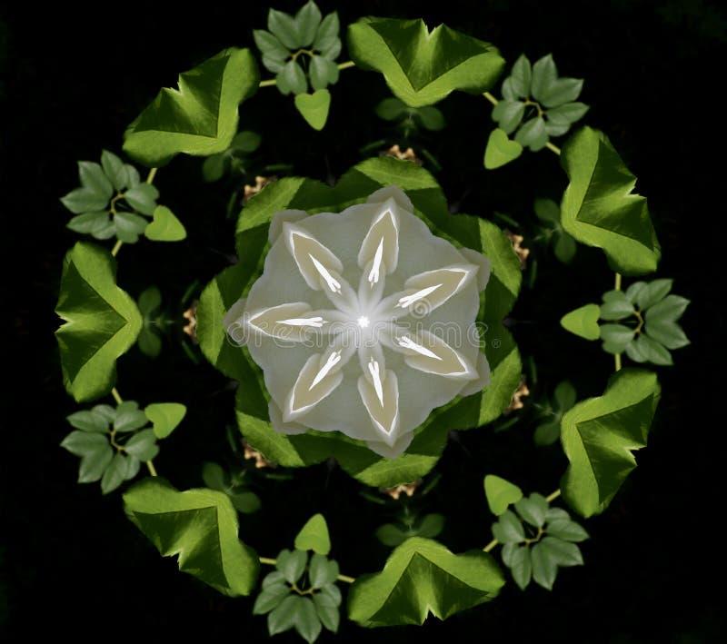 abstrakt bakgrundskaleidoscope Härlig flerfärgad kalejdoskoptextur Unik och oefterhärmlig design Geometriskt symmetriskt royaltyfri illustrationer