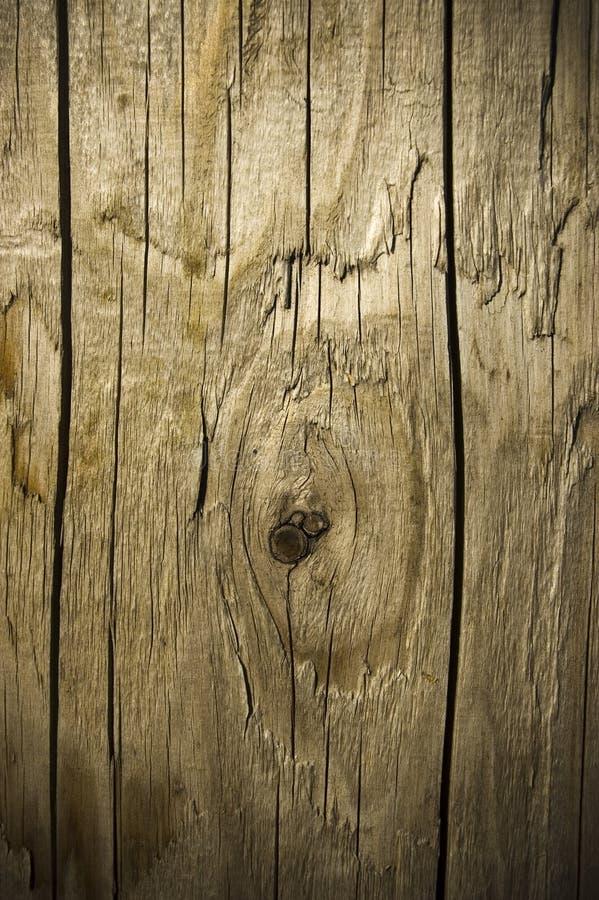 abstrakt bakgrundsmaterial red ut trä arkivbilder
