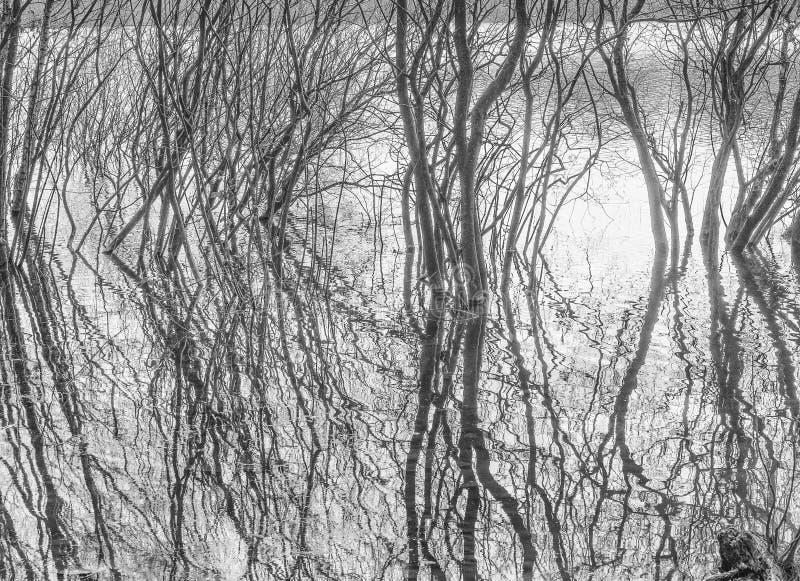 Abstrakt begrepp fotografering för bildbyråer