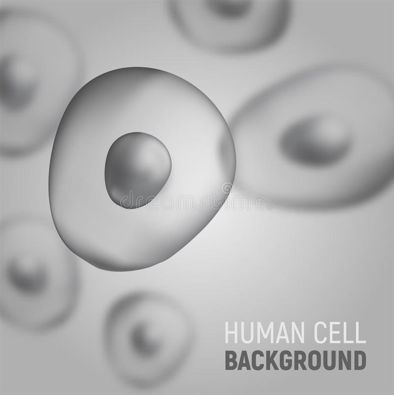 Abstrakt begrepp blured bakgrund med mänskliga celler också vektor för coreldrawillustration Mall för medicin och biologi vektor illustrationer