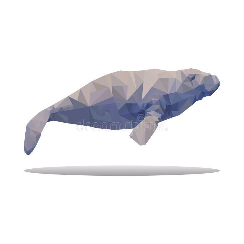 Abstrakt begrepp för polygon för havsko som isoleras på den vita bakgrundsvektorn stock illustrationer