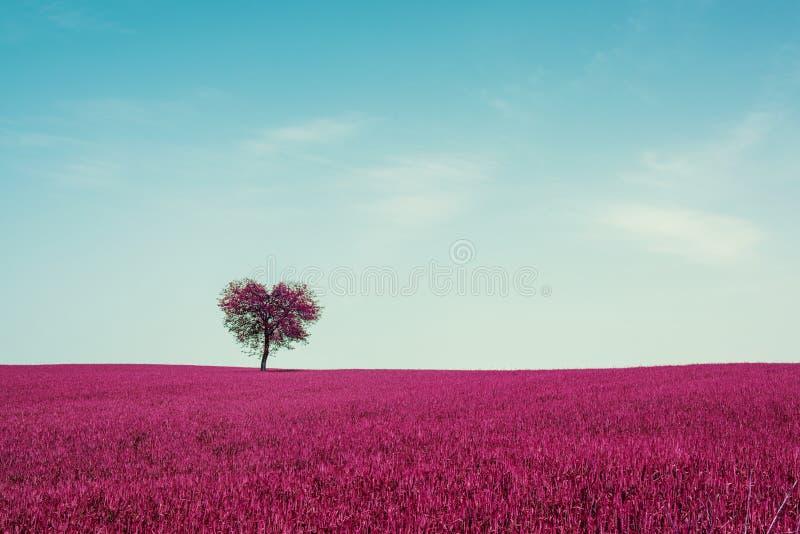 Abstrakt begrepp s?tter in med hj?rta formar treen under bl?ttskyen Abstrakt naturliga bakgrunder f?r din design valentinbegrepps royaltyfri bild